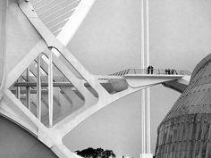 L'observatori de les formigues by Pilonga, via Flickr