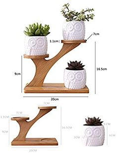 Brightcactus Simple Creative White Plant Succulent Flower Pot Holder Owl C Woodworking Projects Diy, Diy Wood Projects, Furniture Projects, Wood Crafts, Diy And Crafts, House Plants Decor, Plant Decor, Wooden Plant Stands, White Plants