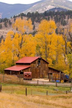 Rocky Mountain Barn Autumn View Photograph by James Bo Insogna - Rocky Mountain Barn Autumn View Fine Art Prints and Posters for Sale