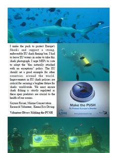 Kenna Eco Diving #SharkAlliance #MakethePush