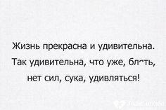 ЕЩЕ АНЕКДОТЫ