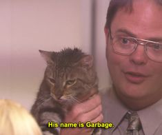 Best Of The Office, The Office Show, Tv Quotes, Movie Quotes, Reaction Pictures, Funny Pictures, Office Jokes, Office Cat, Office Wallpaper