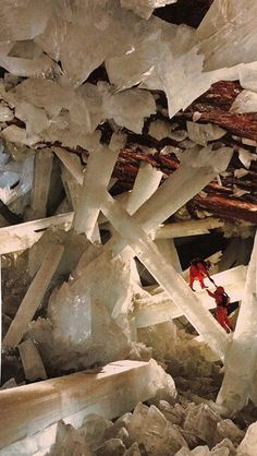 Massive beams of selenite dwarf human explorers in Mexico's Cave of Crystals, deep below the Chihuahuan Desert. Formed over millennia, these crystals are among the largest yet discovered on Earth.