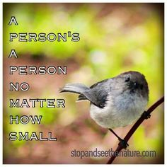 """Cute tiny bird, """"a person's a person no matter how small"""" quote."""