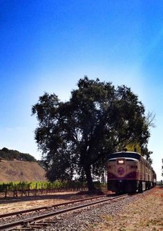 The Napa Valley Wine Train on it's way through Yountville. Image via https://www.facebook.com/WineTrain