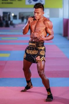 Pramuk) is certainly the most well known Muay Thai… Fighting Poses, Mma Fighting, Muay Thai Training, Martial Arts Training, Martial Arts Styles, Mixed Martial Arts, Ufc, Fitness Workouts, K1 Kickboxing