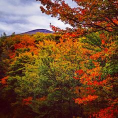 Franconia Notch, Hugh Gallen Overlook.  This is in the White Mountain region of New Hampshire.
