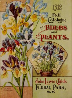 John Lewis Childs Seed Company Catalogue -  rare flowers, vegetables & fruits - 1912