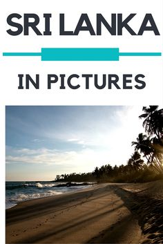Sri Lanka / Sri Lanka - 15 Gründe, warum ihr jetzt dorthin reisen solltet #Asia #SriLanka #travel #luxurytravel #travelblog #travelblogger #Asien #Reise #Urlaub #Reiseblog #Reiseblogger