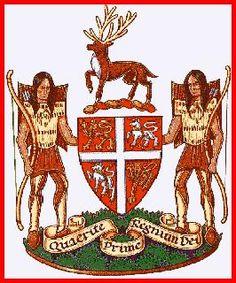 Newfoundland & Labrador Coat of Arms Canadian Things, I Am Canadian, Canadian History, Canadian Flags, Newfoundland Canada, Newfoundland And Labrador, Hockey Cards, Golf Cards, Sea To Shining Sea