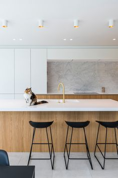 Open Plan Kitchen Living Room, Kitchen Room Design, Kitchen Cabinet Design, Kitchen Interior, New Kitchen, Kitchen Dining, Kitchen Decor, Cocinas Kitchen, Interior Desing