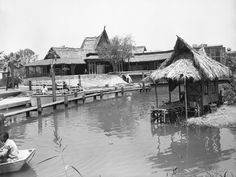 Adventureland invited guests to explore new and exotic worlds. Its central ride, the Jungle Cruise, was one of the first attractions built, because Disney wanted to make sure the foliage had time to bloom.