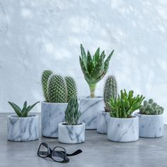 Pot en marbre moyen modèle cm, Sevan - New Deko Sites Cacti And Succulents, Cactus Plants, Plants Are Friends, Deco Floral, Bedroom Plants, Home And Deco, Green Life, Home Decor Accessories, Indoor Plants