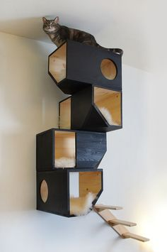 Cats Toys Ideas - Awesome cat house for the crazy cat person in all of us :-) - Ideal toys for small cats Pet Furniture, Furniture Plans, Furniture Online, Wooden Furniture, Cat Playground, Ideal Toys, Cat Shelves, Cat Climbing, Ideias Diy
