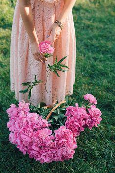 Garden Flowers - Annuals Or Perennials Www.Ro Dantel I Bujori Girls With Flowers, Fresh Flowers, Beautiful Flowers, Ed Wallpaper, Flower Wallpaper, Jolie Photo, Flower Farm, Garden Inspiration, Flower Power
