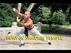 Wu Tang Collection: Fury In Shaolin Temple