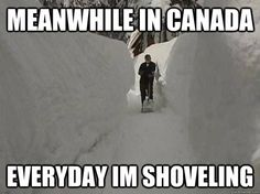 meanwhile in canada memes Canadian Memes, Canadian Things, I Am Canadian, Canadian Winter, Canadian Girls, Canadian Humour, Funny Quotes, Funny Memes, Hilarious