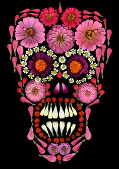 Flower Skull by Portia Munson. The artist uses flowers from her garden and arranges them on a scanner to photograph the image. #ModernArt #Photography