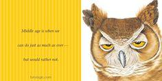 Furry Logic, Jane Seabrook