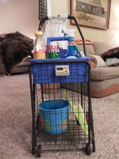 A Cleaning Cart (on wheels).  What a fabulous idea!  Must make this for myself!!!