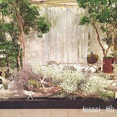 メイン装花試作☺︎ リゾートサーフ×ナチュラル - 今回のポイントはキウイのつる☺︎ ドライにするはずの花たちはイメージしてみると 良さそうだったのでドライではなくオアシス行きとなりました(笑) エアプランツに はまってからコイツなしの盛り付けができません - それはそうと今日igで知り合った @balloonshop_r さんが遊びに来てくれました☺︎ 大阪でバルーンアーティストをされてるそうで☺︎ 僕のこのアカウントはほとんど知り合いいないので情報共有できれば嬉しいです♪ はじめましてのかたも見学だけでもお気軽にお越しください♪ - - 先ほどのpostでも記載しましたが一応です↓↓ 4/19まで撮影会の募集をしてましたが大変多くのご応募をいただきましてありがとうございました 本当に感謝しております 大変申し訳ないのですが締め切りを2日早い本日の24:00までとさせていただきます 当選発表は明日から予定通りの21日までにDMを送らせていただいきます☺︎ #tessei_ttb撮影企画 #高砂装花#夏婚#ナチュラルウェディング#ウェディングdiy#ウェルカム...