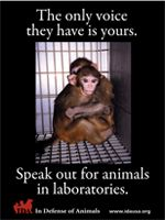 TAKE ACTION!  Tell Congress To END CRUEL, WASTEFUL, & INEFFECTIVE Taxpayer-funded Animal Experiments!  With a budget of $31 billion, the U.S. Nat'l Institutes of Health (NIH) is shamefully the world's largest funder of experiments on animals.  Many other western countries have been transitioning for years towards much more effective & cruelty-free non-live animal alternatives!  It is long overdue for the USA to do so as well! PLZ Sign & Share!