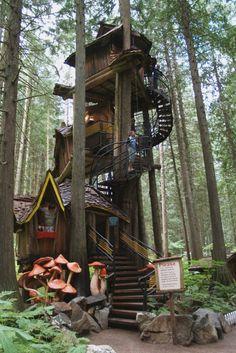 Awesome tree house idea.