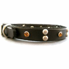would be great for fall! dog collar
