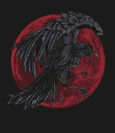 Crow by Bullet Bacalzo Crow Art, Raven Art, Vikings, Rabe Tattoo, Arte Obscura, Crows Ravens, Viking Tattoos, Crow Tattoos, Phoenix Tattoos
