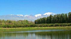 MENDOZA - Argentina, turismo bodegas y viñedos. Ruta del vino en Mendoza...