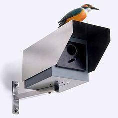 le nichoir caméra de surveillance.