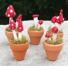 MiniatureFairy Garden Accessory - Mushroom Pot https://www.etsy.com/listing/237171626/fairy-garden-mushrooms-in-flower-pot