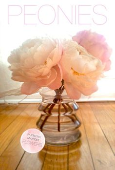 I was thinking, maybe of having just one or two big flowers for centerpieces in a shorter dollar-store-vase - maybe peony?
