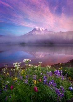 "Marc Adamus: ""Beauty"" - Mount Rainier, Reflection Lake, Mist, Sunrise, Wildflowers"