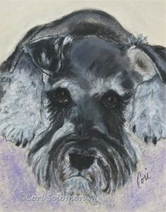 Daisy Schnauzer Art By Cori Solomon, painting by artist Art Helping Animals