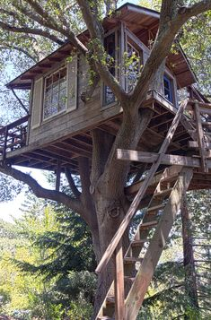 Deck alto, tree house designs, backyard treehouse, treehouse ideas, b Backyard Treehouse, Building A Treehouse, Treehouse Ideas, House In The Woods, My House, Patio Grande, Woodland House, Cool Tree Houses, Tree House Designs