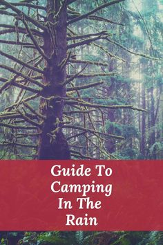 Camping In The Rain, Camping Gear, Camping Hacks, Outdoor Camping, Camping Checklist Family, Camping Essentials, Family Camping, Vintage Caravans, Vintage Travel Trailers