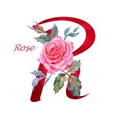 "Letter ""R"" with rose, watercolor drawing on white background isolated. - Buy this stock illustration and explore similar illustrations at Adobe Stock R Letter Design, Alphabet Design, Monogram Alphabet, Watercolor Rose, Watercolor Drawing, Instagram Spacers, Flower Alphabet, Name Art, Letter Patterns"