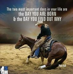 Inspiration courtesy of Morgan Cromer Faye Reys Sis (of Holy Cow Performance Horses). Check out the website for Rodeo Quotes, Cowboy Quotes, Cowgirl Quote, Equestrian Quotes, Cowgirl And Horse, Horse Love, Western Quotes, Hunting Quotes, Quotes Quotes