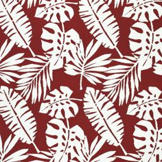 Floral Fabrics | Greenhouse Fabrics Red Fabric, Floral Fabric, Floral Prints, Tropical Fabric, Tropical Pattern, Greenhouse Fabrics, Outdoor Fabric, Deco, Fabric Design