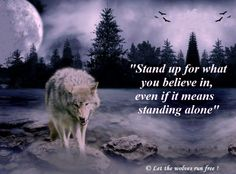 Stand Up for What You Believe in Even if it Means standing Alone--Let the Wolves Run Free Photo
