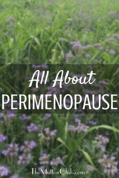 Why it helps to understand perimenopause, what to expect, when to expect it and the natural remedies that can help ease symptoms.