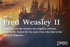 I'm Fred Weasley II! Which next generation 'Harry Potter' character are you? - Quiz