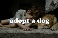 Adopt a dog #bucketlist