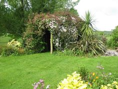 Ashridge Organic Farm Piggery, Devon. Large lawns and patio with chairs and table to enjoy the long summer evenings http://www.organicholidays.co.uk/at/3279.htm