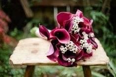 Calla lilies and wax flowers. Both in season in October. Calla Lily Bouquet, Tulip Bouquet, Calla Lillies, Lilies, Red Bouquet Wedding, Bridesmaid Bouquet, Floral Wedding, Wedding Flowers, Lily Wedding