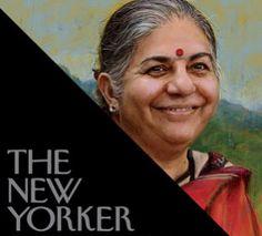 Screen Shot 2014-08-26 at 10.54.43 AM Genetic Literacy Project exclusive: New Yorker editor rebukes anti-GMO activist Vandana Shiva for misrepresentations.