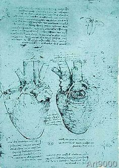 Leonardo nach da Vinci - The Heart, facsimile of the Windsor book