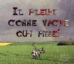 French idioms - il pleut comme vache qui pisse! - льет как из ведра