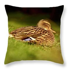 Sunbathing duck Throw Pillow for Sale by Helen Kelly